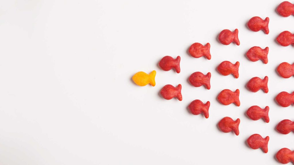 3 THINGS I WISH I KNEW WHEN I STARTED LEADING